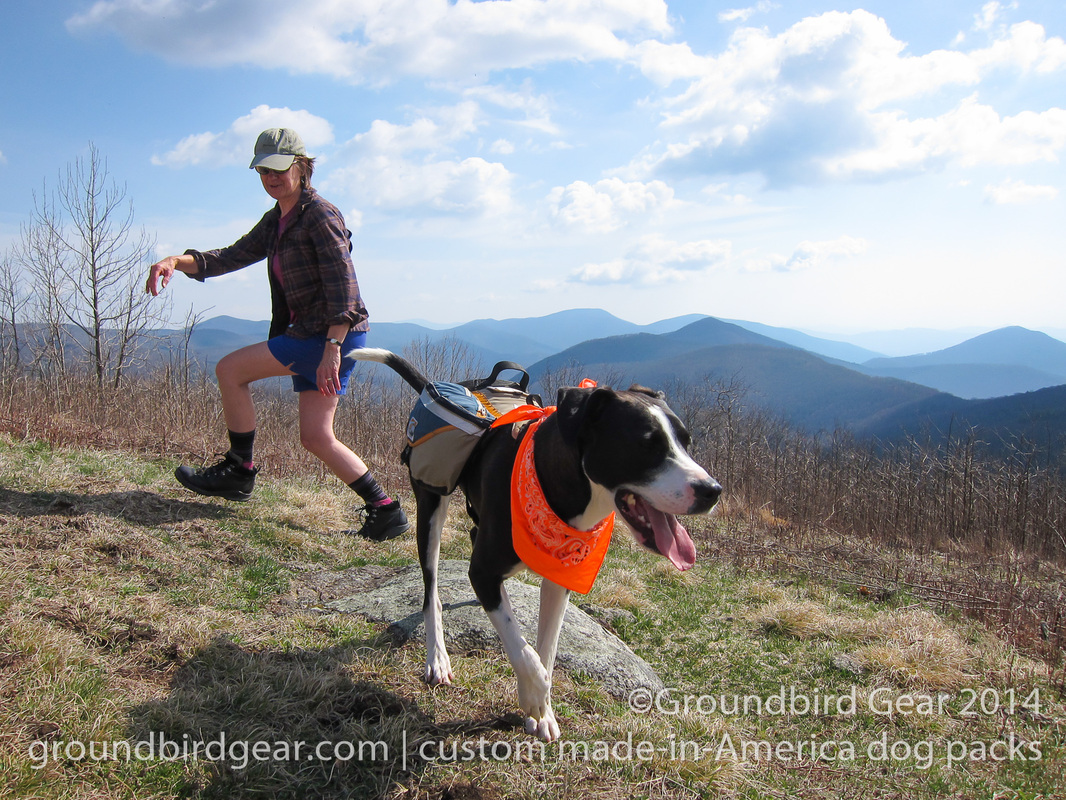 Groundbird Gear's hiking blog. Lightweight, custom fit, made in USA dog packs. For backpacking, thru-hiking, hiking with your dog! The Religious Range, Appalachian Trail, VA