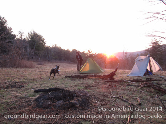 Groundbird Gear's hiking blog. Lightweight, custom fit, made in USA dog packs. For backpacking, thru-hiking, hiking with your dog! Hogcamp Gap, Appalachian Trail