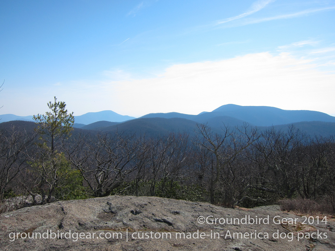 Groundbird Gear's hiking blog. Lightweight, custom fit, made in USA dog packs. For backpacking, thru-hiking, hiking with your dog! View of the Priest and Three Ridges from Spy Rock, Appalachian Trail