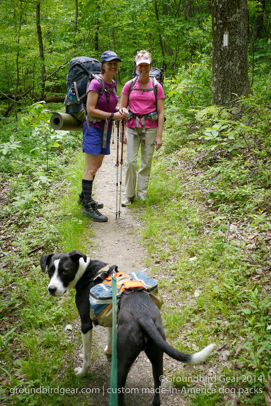 Groundbird Gear's hiking blog. Lightweight, custom fit, made in USA dog packs. For backpacking, thru-hiking, hiking with your dog!